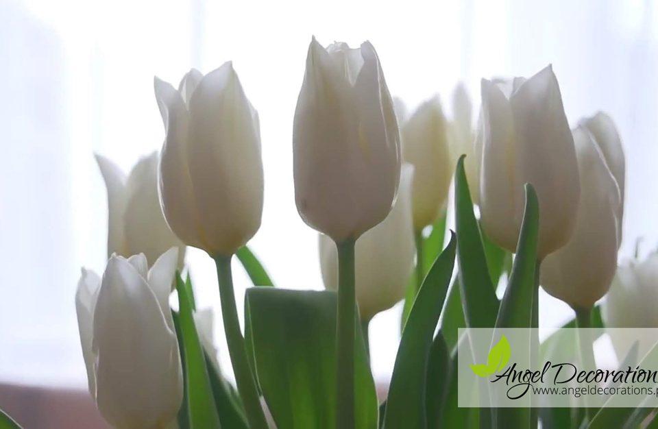 dekoracje-kwiatki-Angeldecorations-krakow