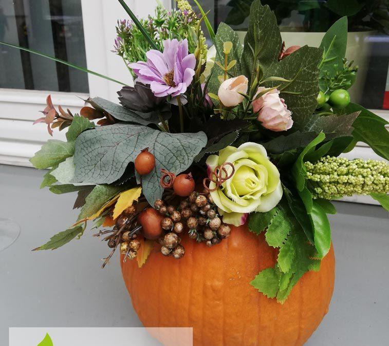 dynia-kwiatyl-dekoracja-angeldecorations-wypozyczalnia